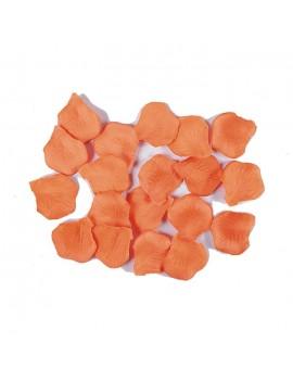 Petali Colore Salmone in Velluto