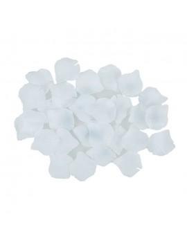 Petali Colore Bianco in Velluto