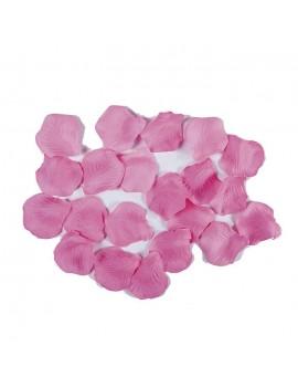 Petali Colore Rosa in Velluto