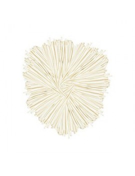 Palloncino Modellabile Bianco (50pz)